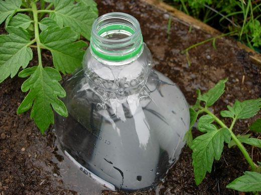 Interesting!  Drip irrigation- I do this every year and it works great! Especially during a long Texas drought- less water waste. The only thing that kept my plants going, and once the plants get growing they hide the bottles. Quick and easy way to fertilize too!
