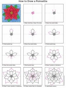 Poinsettia+Diagram
