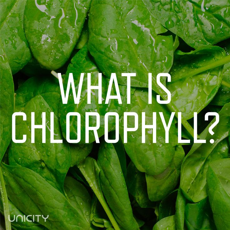 Chlorophyll is the green pigment found plants that helps turn sunlight into energy.  It was discovered in 1906 and was the first time magnesium was detected in living tissue.  Two types of chlorophyll exist: Chlorophyll A and B.  It is a good source of vitamin A, K, C, and E!  Chlorophyll is packe
