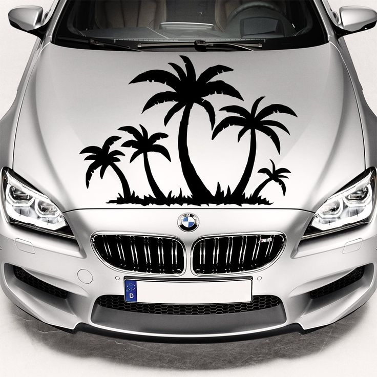 Best Stickers On The Car Hood Images On Pinterest Cars Car - Create car decalsanime decal etsy