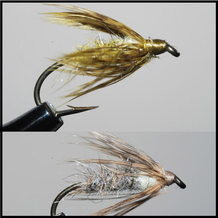 1000 images about 1 my fishing hole on pinterest mayfly for Fly fishing nymphs