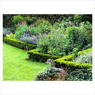 Mixed summer borders edged with low Buxus hedges in garden with stone dog statue