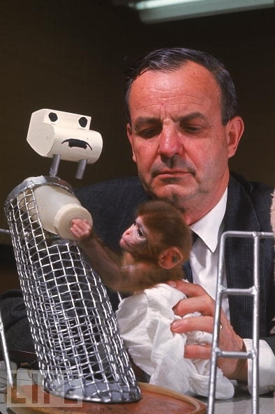 harlow animal behaviour psychology In the 1950s research which used animal subjects to investigate early life experiences and the ability for organisms to form attachments contributed significantly to the field of developmental psychology two of the most well-known animal studies were conducted by konrad lorenz and harry harlow.