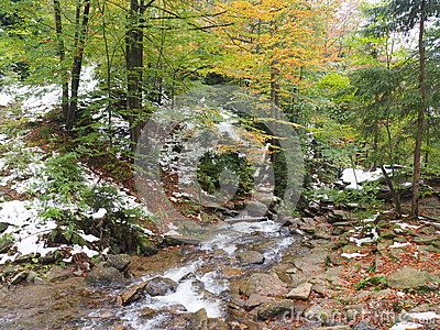 Autumn and winter in the same picture. Forest and river.