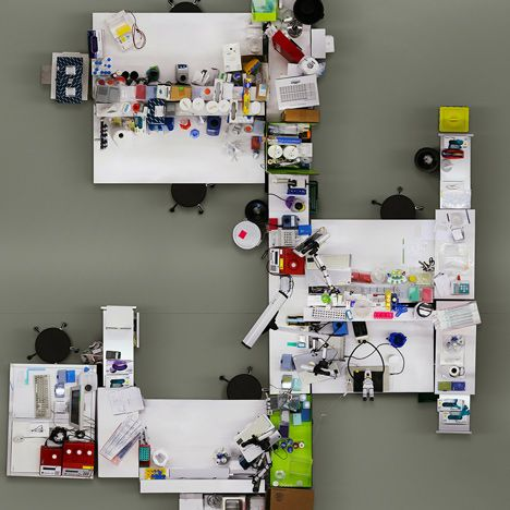 Lab photographed from a bird's-eye view by Menno Aden ( stock )