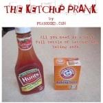 The Ketchup Prank: Fun Pranks, Ketchup Pranks Thi, 1St Boards, Go Hmmm, Bff Boards, Funny Bones, Funny Lol, Families Fun, Funny Sh T