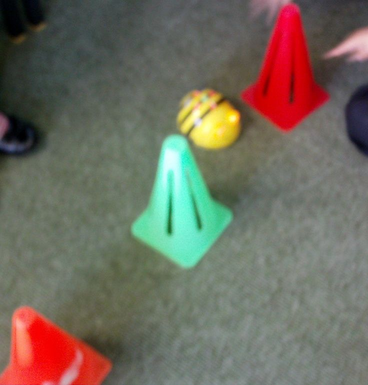 Beebot Olympics! I had 5 different activities set up in which pupils had to direct the Beebots around obstacles, such as: zig-zagging through cones; finding their way around a maze; rolling a die onto a large 100 square and directing it to the number it landed on. This was with a Year 3 class.