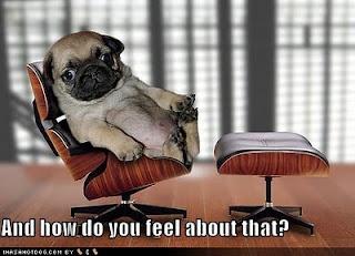 Dr Pug.