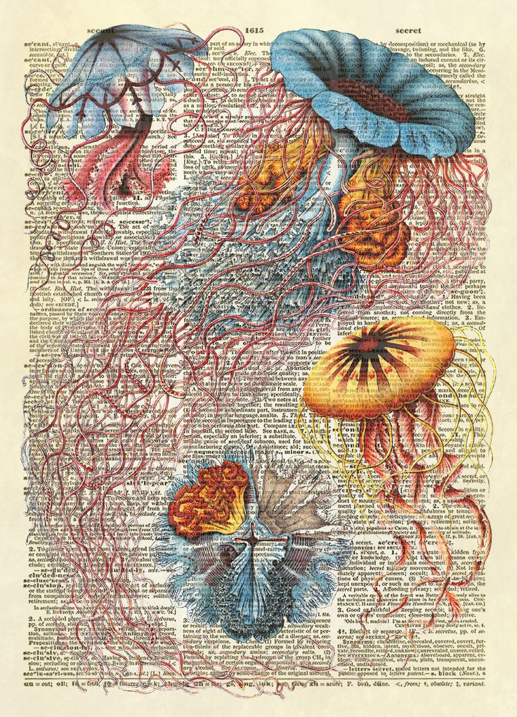 """This print of jellyfish is from """"Discomedusae"""", from Ernst Haeckel's Kunstformen der Natur, published in 1904. Beautifully detailed! This is an amazing image printed on an upcycled vintage dictionary"""