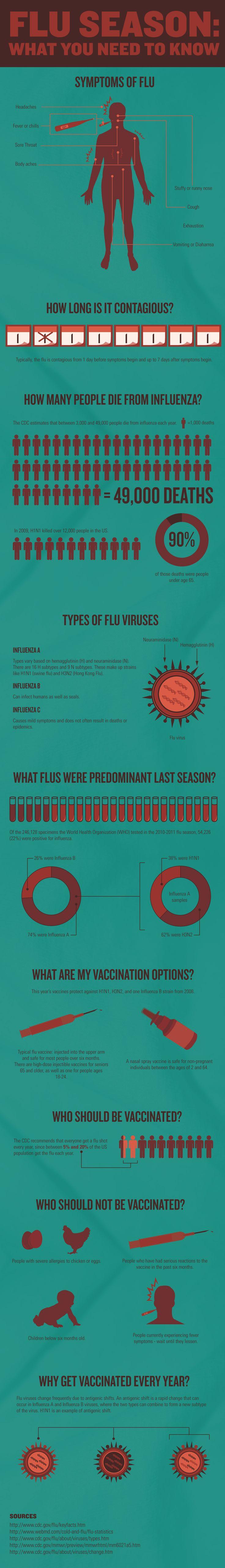 Understanding Flu #Understanding #Flu #Infographics