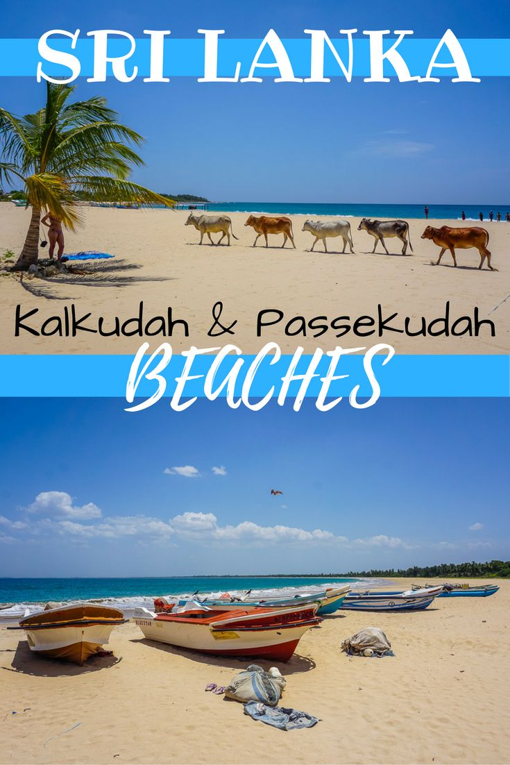 Kalkudah and Pasikuda Beaches in Sri Lanka are two breathtaking back to back stretches of sand. But they are quite different. In this post we compare the two. | Top Sri Lankan Beaches | Best Sri Lanka beaches | What beaches to visit in Sri Lanka | Deserted beaches Sri Lanka | Explore Sri Lanka | Non Touristy beaches Sri Lanka | Must see beaches Sri Lanka | Accommodation at Kalkudah Beach | Accommodation at Passekudah beach | Backpacking Sri Lanka | Sri Lanka on a Budget | Visit...