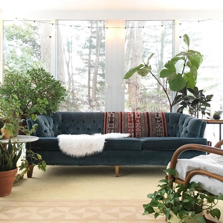 The 25 Best Blue Velvet Couch Ideas On Pinterest