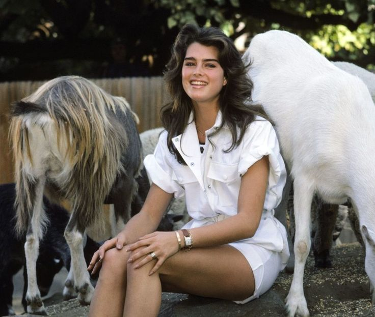 Brooke Shields: Her Controversial Secrets Revealed - Page 7 of 34 - 90s Kids Only