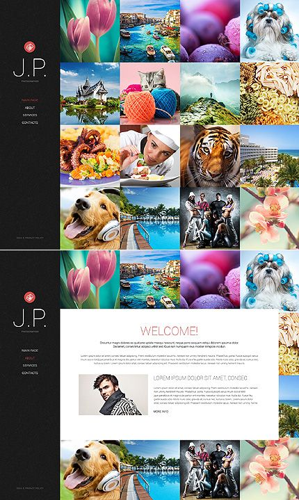 17 best animated website design templates images on pinterest template 48940 photo website template pronofoot35fo Choice Image