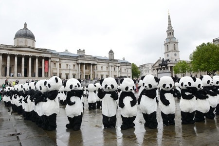"""Could this be used as a marketing tool to tell how many pandas or tigers or any other rare specie is dying in hour. All the """"animals"""" would gather together to a market and for example if an animal dies every five minute, they would just drop down. Rhinos, Elephants etc. Greenpeace, how about?"""