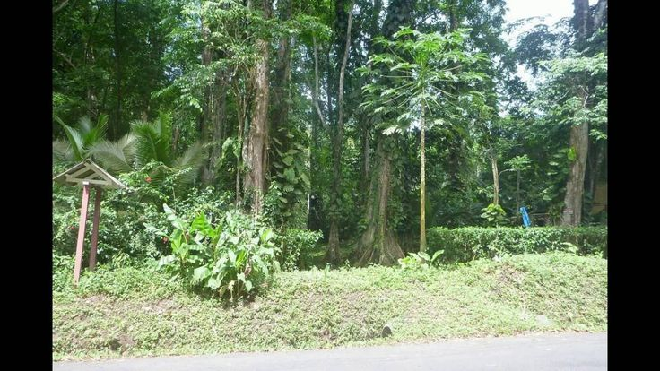 Costa Rica Caribbean Lot FSBO
