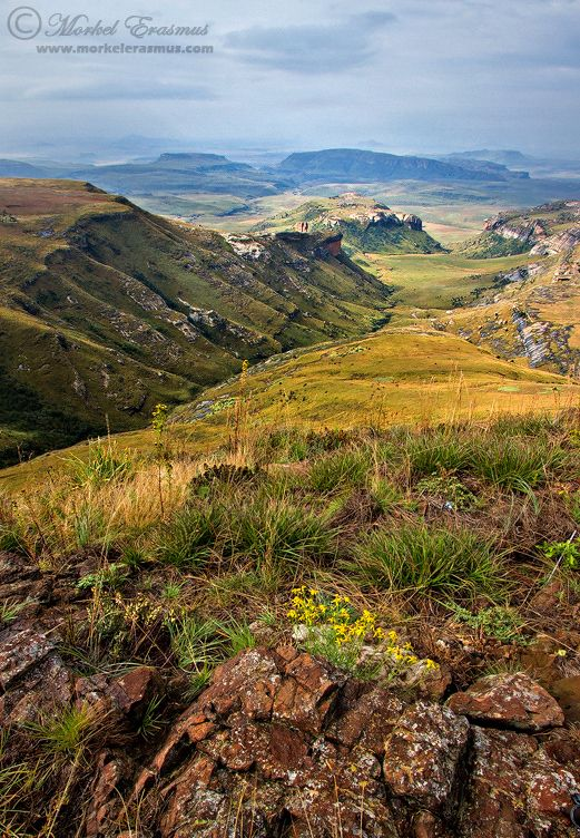 A gorgeous vista overlooking the Maluti Mountains (part of the greater Drakensberg range) in the Golden Gate Highlands National Park, South Africa