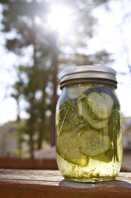 DIY Dill Pickle, Refrigerator Pickle Recipe (originally from Bobby Flay)
