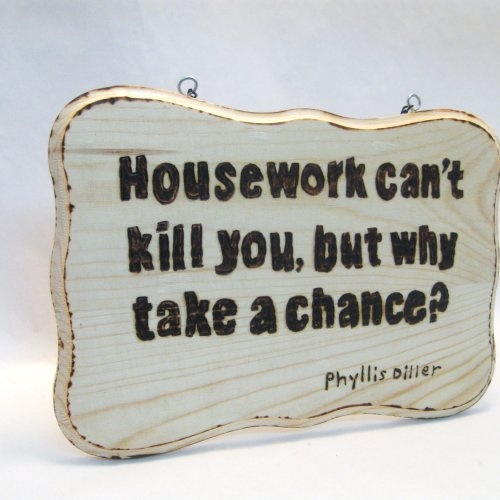 Why indeed?Burning Signs, Best Friends, Quotes Humor, Wood Burning, Mothers Quotes Signs, Phyllis Diller, Diller Quotes, Signs Phyllis, Humor Wood