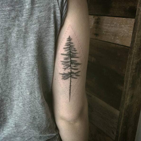 best 25 pine tattoo ideas on pinterest pine tree pine tree tattoo and tree tattoos. Black Bedroom Furniture Sets. Home Design Ideas