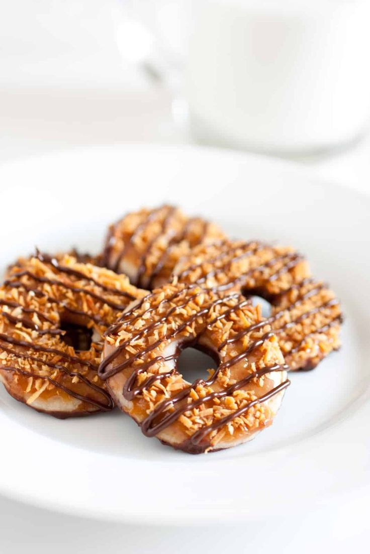 Who doesn't love a Girl Scout Samoa Cookie? They are by far my favorite Girl Scout Cookie. This past spring I purchased eight cartons of the Dreyers Girl S