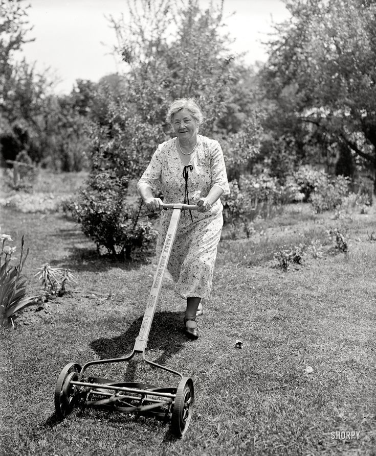 "Vintage Photo Of Grass: ""Circa 1930s. Possibly Notable Lady Trims Lawn In Or"