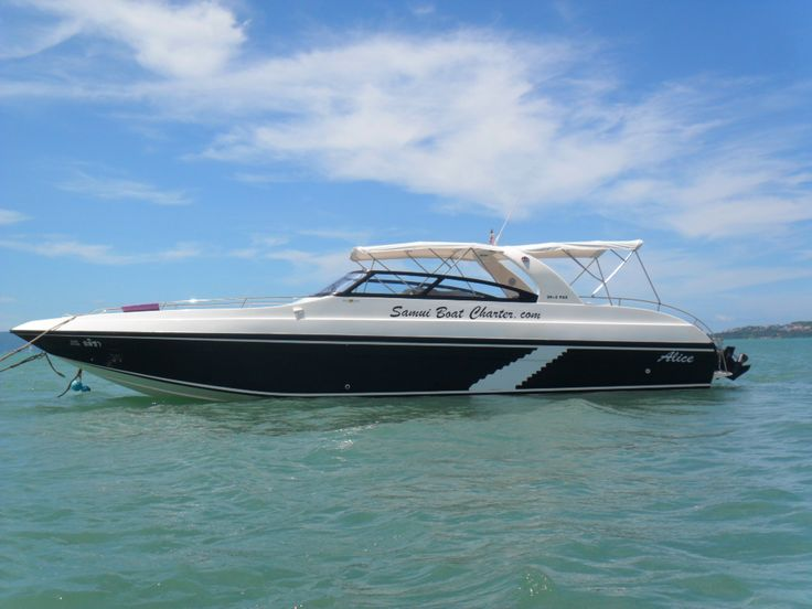 Alice - 40ft fibreglass speed boat, seating 28 passengers but more comfortable for a group of 22. With a max speed of 35 knots and cruise speed of 28 knots.