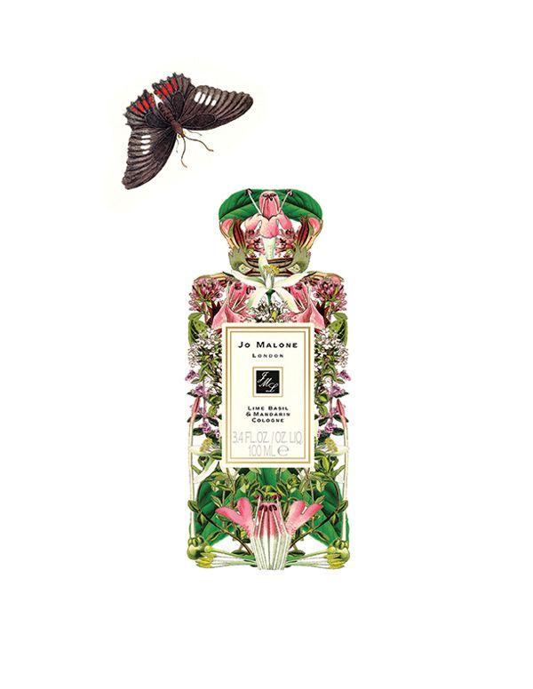 Floral Alchemy by Sixto-Juan Zavala, via Behance