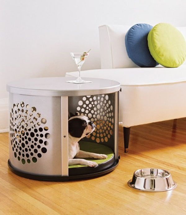 Small Dogs Cages and a furniture!