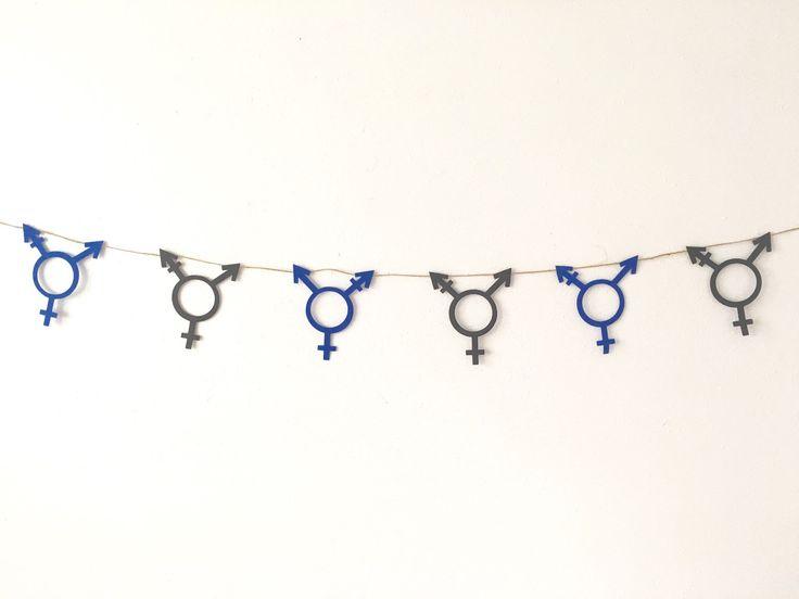 Transgender Banner, Transgender glitter banner | Transgender Symbol Banner | Custom Transexual Banner by Gaypartysupply on Etsy