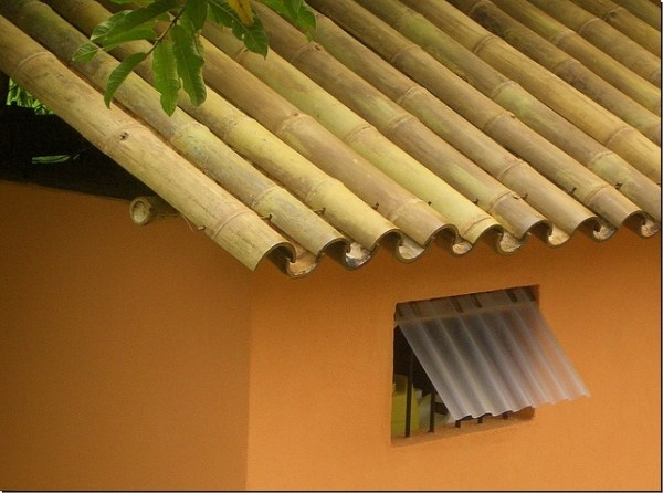 Big Bamboo poles over roof  Plans at http://www.goodshomedesign.com/how-to-build-with-bamboo-19-projects-you-can-do-at-home/