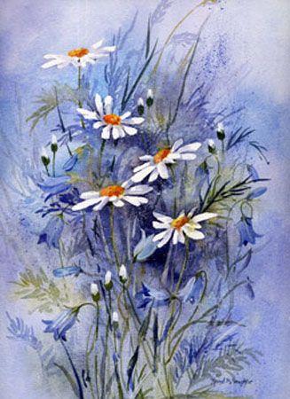 Rachel McNaughton Watercolors