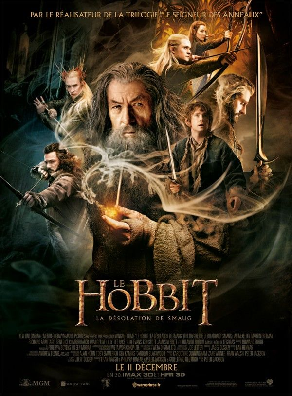 Le Hobbit : La désolation de Smaug (2013) Martin Freeman, Richard Armitage, Ian McKellen, ...
