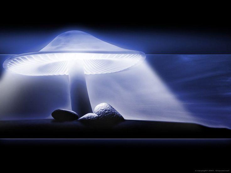 taustakuvat kuvia - Grafiikka: http://wallpapic-fi.com/taide-ja-luova/grafiikka/wallpaper-26543