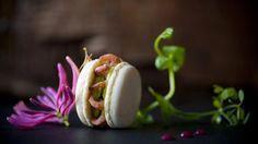 Hartige macaron met grijze garnalen en guacamole | VTM Koken