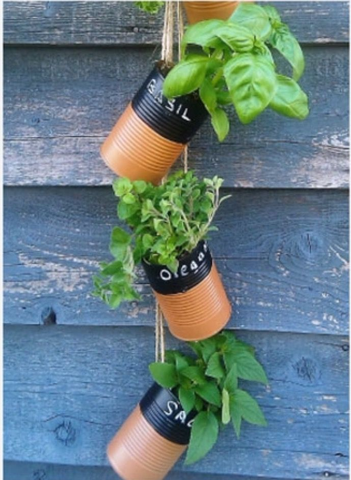 Like the idea of using tin cans to grow herbs. Different paint job and wouldn't hang them.