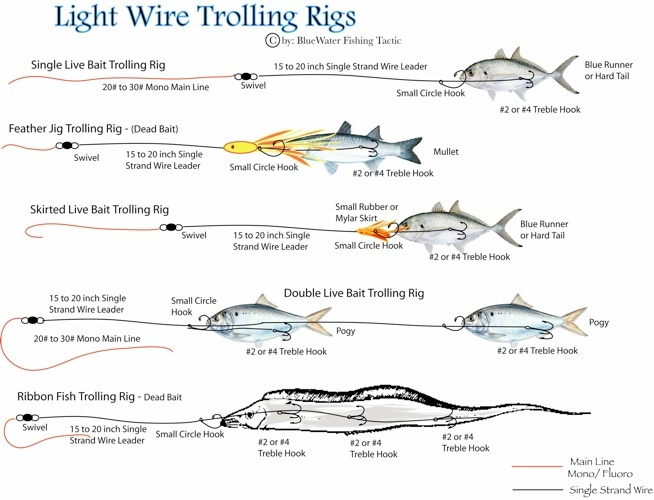 Light wire trolling rigs fishing rigs pinterest wire for Pier fishing rigs saltwater