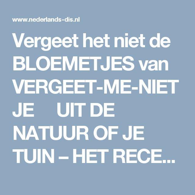 Vergeet het niet de BLOEMETJES van VERGEET-ME-NIETJE UIT DE NATUUR OF JE TUIN – HET RECEPTENBOEK VAN NEDERLANDS DIS