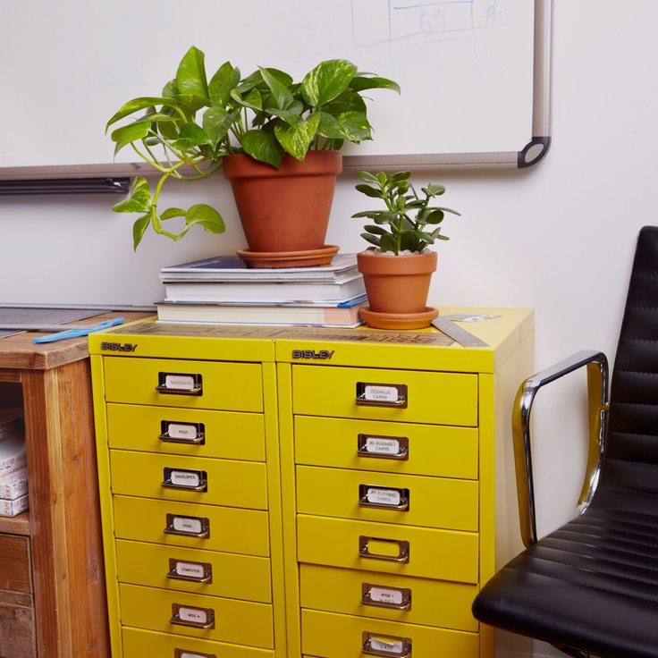 535 Best Office Plants Desk Mates Images On Pinterest