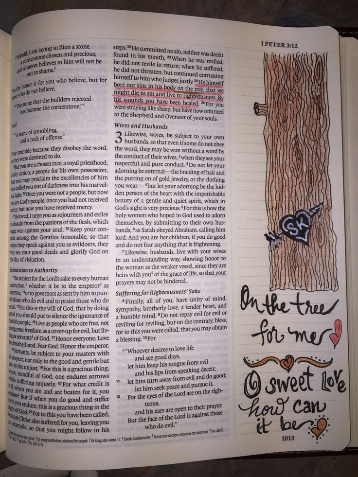 thesis of timer redemer Thesis (big idea): the big story of the bible (creation, fall, redemption & restoration) is so all-encompassing & so true to the way things are, that people made in god's image cannot help but echo that story or parts of it in the stories we tell.