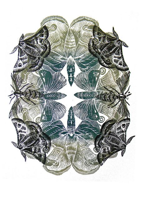 Moth Lino cut print by Amanda Colville