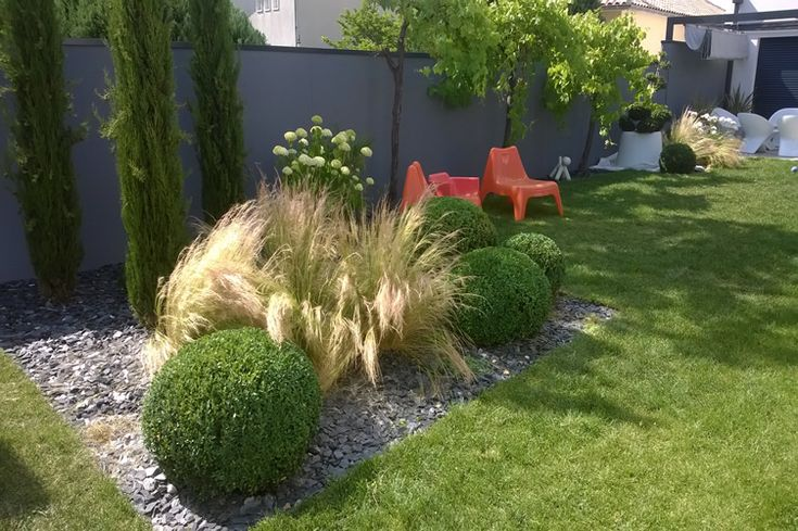 1000 id es sur le th me arrosage automatique sur pinterest graines plantes vivaces et pots de - Arbuste contemporain ...