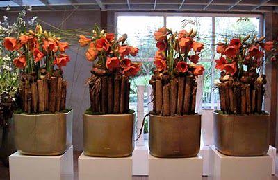Open huis bij Mobach 2009 - bloemist Ruud Hazelaar uit 's Gravenzande