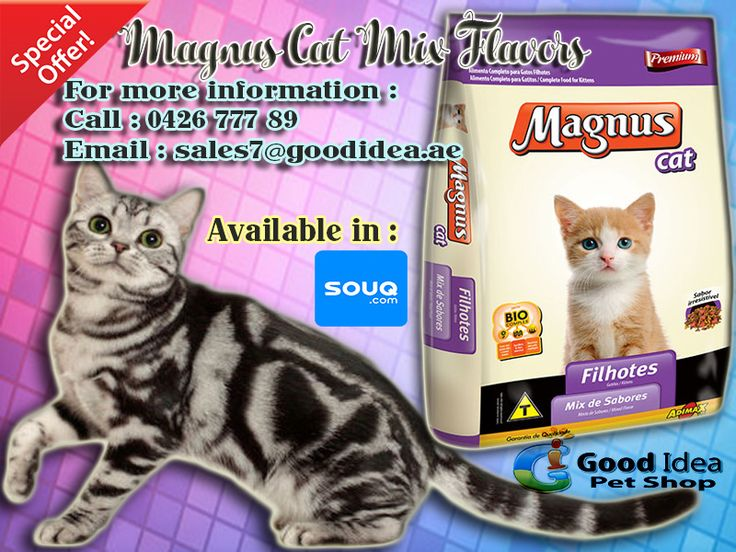 MAGNUS CAT MIX FLAVORS are now Available in Good Idea Pet shop! You can now also Order in SOUQ.COM For affordable prices :) For more information: Call:042677789 loc 112 Email:sales7 @goodidea.ae ◘ We are open for those who have petshops,pet store and Good samaritans helping those stray with promotional offer ♥ #CatFood #Delicious #CatLovers #StrayCats #CatOwners #DXB #CatsinDubai #Food #Treats