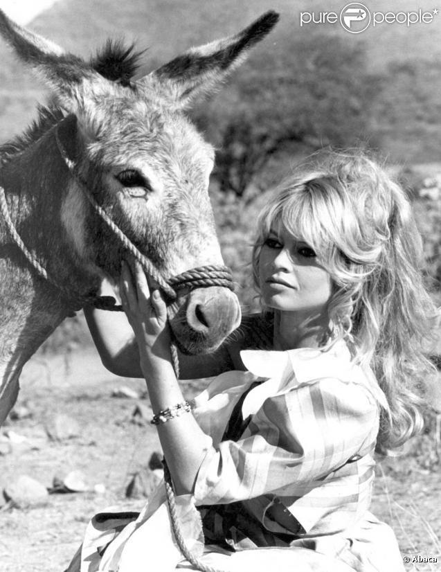 Brigitte Bardot sur le tournage du film Viva Maria, en 1965