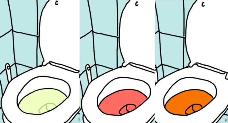 Comment analyser votre urine pour savoir si vous êtes en bonne santé