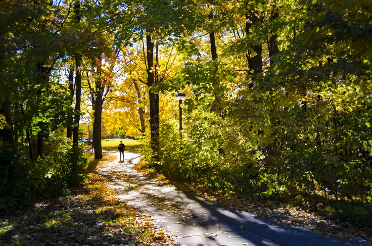 Central Michigan University Campus Pictures