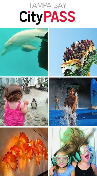 Tampa Bay CityPASS Sale!! $99/person age 10 & up. Reg $217. Includes: 1 day of Busch gardens, Lowry Park Zoo, Florida Aquarium, Clearwater Marine Aquarium, and the Museum of Science & Industry.