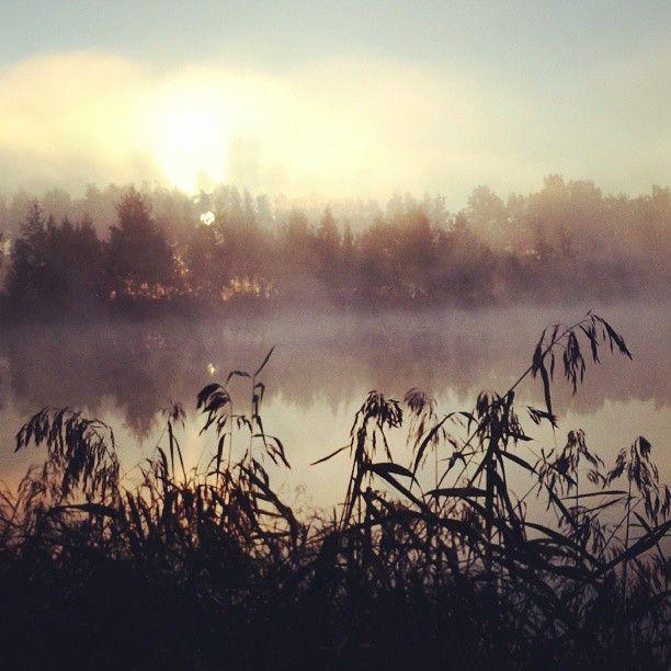 21-27 октября 2013 года. Лучшие фотографии на магнитах Instamagnet.Ru за неделю