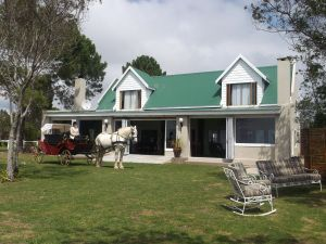 T'Niqua Stable Inn Guesthouse & Horse and Carriage